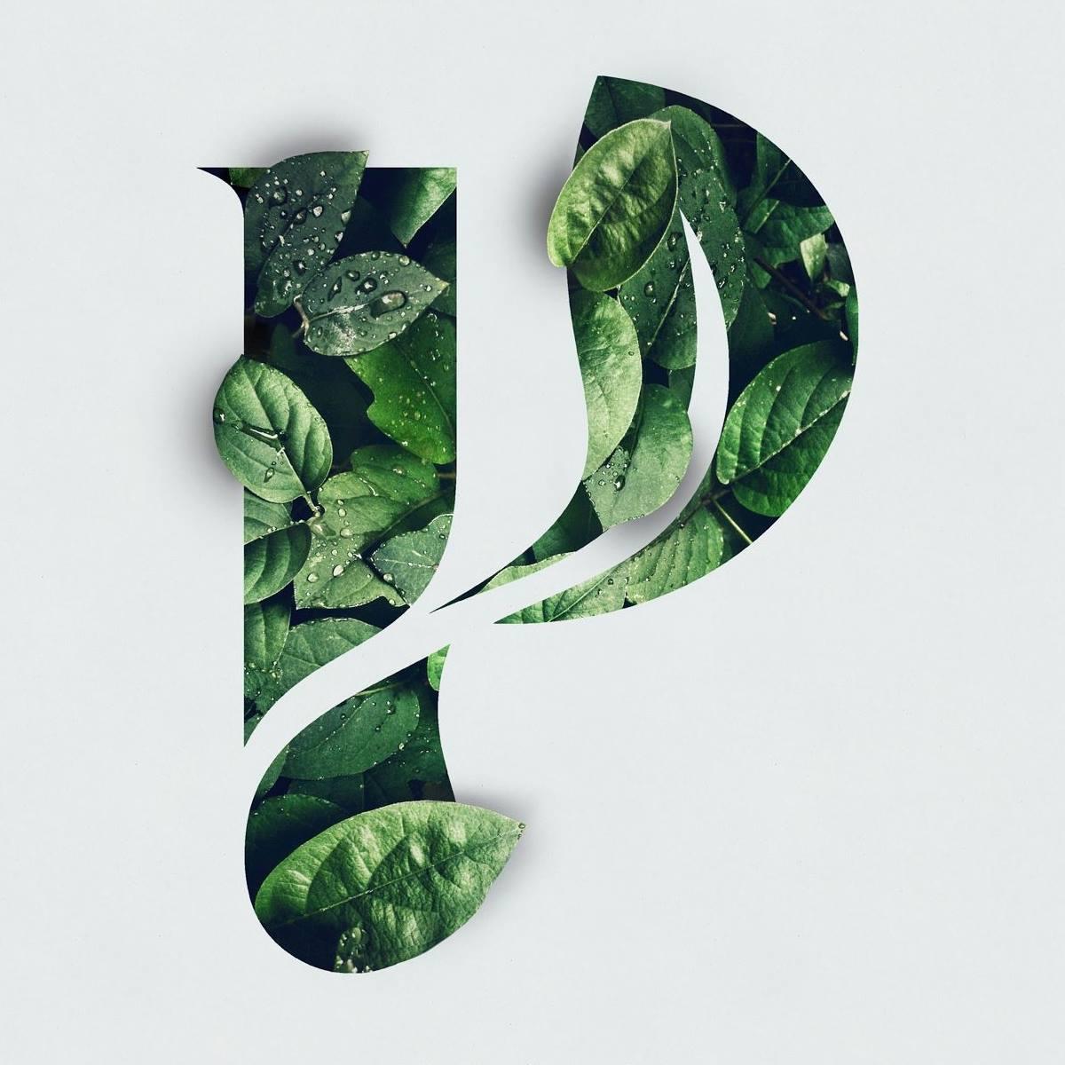 Plantea